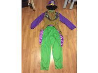Mad Hatter Costume (Fancy Dress)