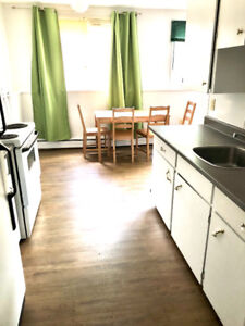 Furnished one bedroom apartment is available on Dec. 5