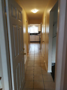 NEW APARTMENT!!!   Danforth Road near St Clair-nopets/smokers
