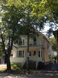 FEMALE ROOMMATE WANTED FOR JAN.1ST IN BRIGHT CHARACTER HOME!