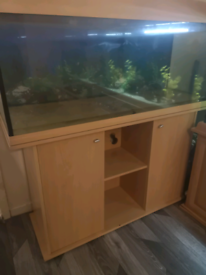 NEED GONE FISH TANK AND STAND