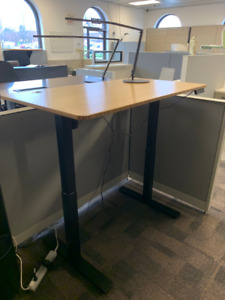 Electric Height Adjustable Desk (Motorized)