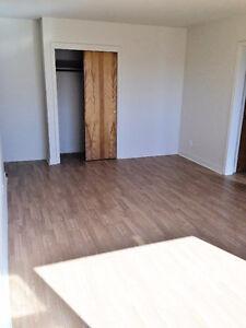 Large 2 Bedroom Heat Inc.