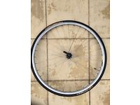 700c bianchi racing front wheel with tire
