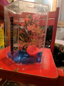 3 gallon beta fish tank