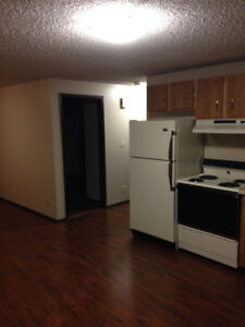 1 bedroom Basement Suite Vermilion Available May 1