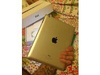 iPad 4 wifi only apple