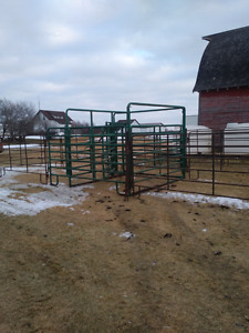 Cattle maternity pen