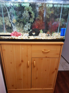 fish tank n wooden stand like a cupboard