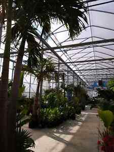 Tropical Winter Storage Available