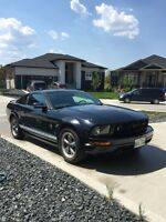 2006 Ford Mustang FUN CAR!