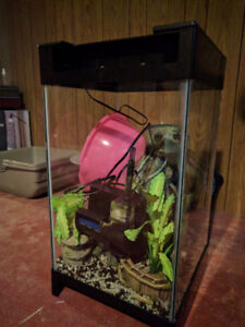 Fully Equipped Column Fish Tank