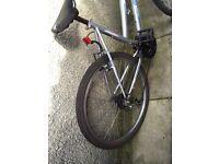 Bike hemphis