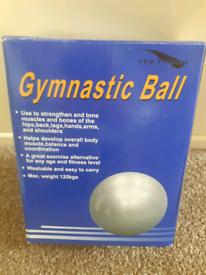 Pro Fitness Gymnastic Ball