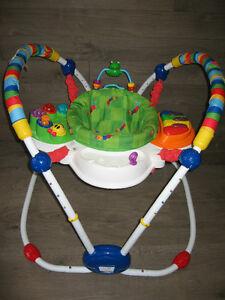 Jumperoo (Baby Einsten)