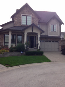 South Surrey Basement suite for Rent (Morgan Heights)