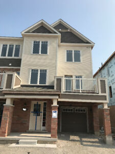 Brand New End Unit Townhouse for Lease in Milton
