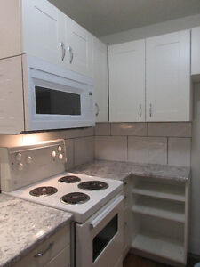 Gorgeous Lindsay century home 2BR apt, small pet considered