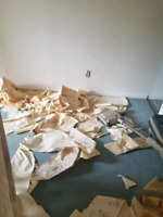 Wallpaper Removal & Drywall Repairs (613)302-9295 call text or e