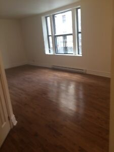 Completely renovated 1 bdr (2 bdrm also available at $1650/mo.)