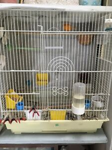 Birds Cage for sale