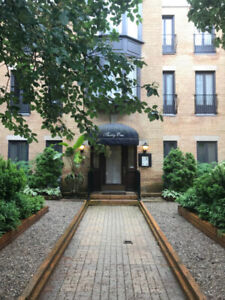 Furnished Studio Apartment for Rent Short Term in Cabbagtown