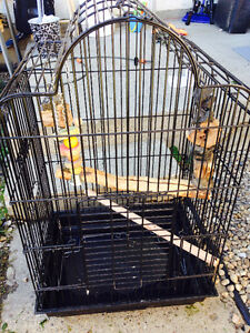 Bird cage include accesories