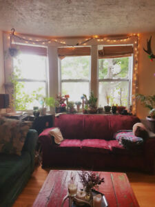 Room in Cosy North End Home