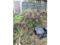 Free wood collection only (bonfire night)