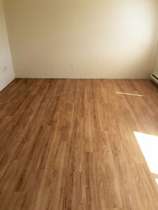 Newly renovated and applances 1500 sq ft townhouse (Nov 1st)