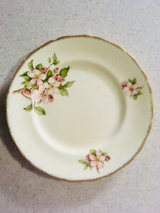 Antique Dishes 1930's