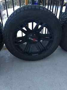 Worx rims and winter tires