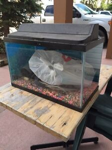 10 gallons fish tank $50