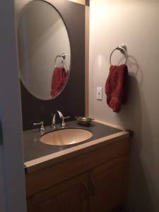 Power Room Countertop, sink, faucet, mirror and surround