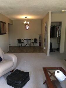 1 Bedroom - MODERN QUIET AVAILABLE NOW