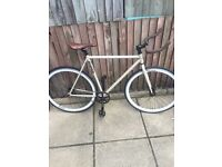 Mango fixed gear / single speed