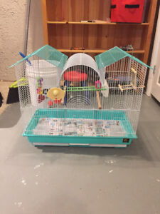 Budgie or small lovebird small parrot or small conure cage