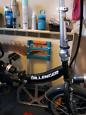 DILLENGER Folding Electric Bike, (CHEETAH)
