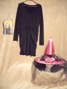 Pink witch costume (Adult) - Smoke & pet free home.