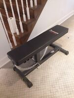 Iron master tilting bench and weight set + accessories