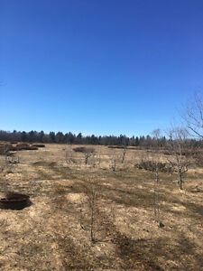 Prime Hunting Property - Manitoulin Island