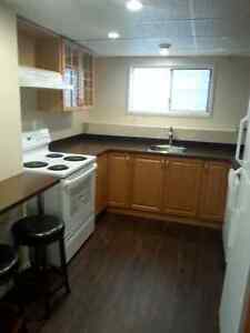 LOWER LEVEL OF SPLIT LEVEL HOUSE FOR RENT IN HIGH RIVER