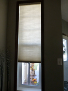 Hunter Douglas Honey Comb Window Coverings