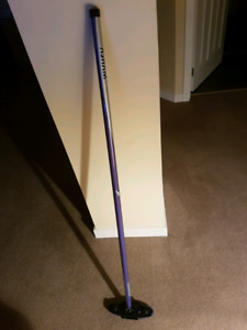 Curling broom