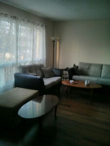 Roomate wanted, basement room London Ontario image 1