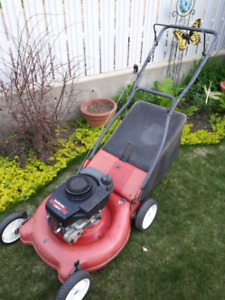Rear bag lawnmower
