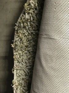Area carpet 5x7,  excellent condition!  Soft muted grayed green.