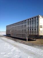 Cattle liners for sale