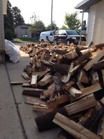 Truckloads of pine! Bags of pine & more!!