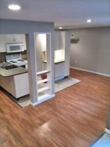 Legal basement suite, Langley (Willoughby Heights)